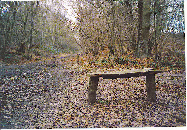 Downslink Path, South of Cranleigh.