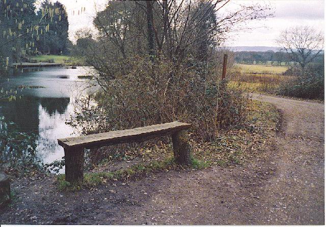 Newhouse Farm Pond, on the Downslink Path.