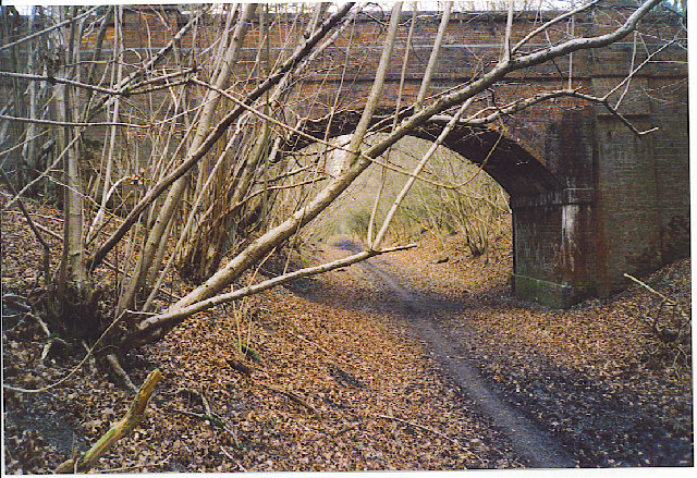 Lodge Copse Railway Bridge.