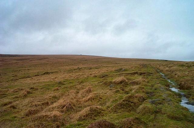 Brent moor - Dartmoor