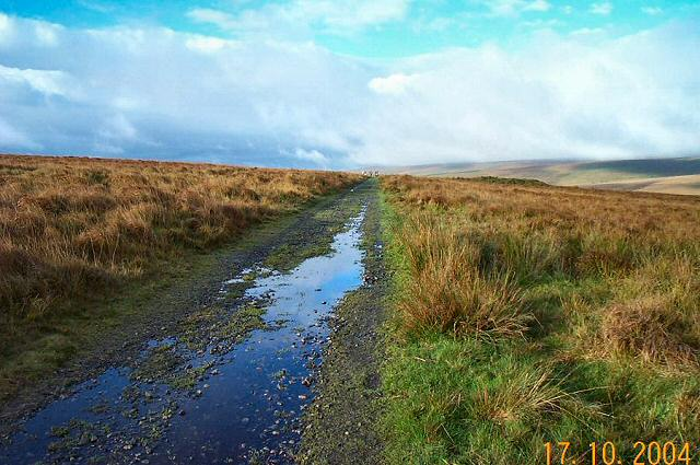 Track beside Quickbeam Hill - Dartmoor