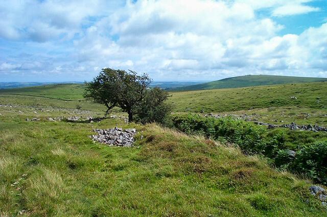 East Glaze brook - Dartmoor