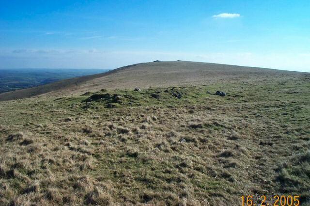 Beacon plain - Dartmoor
