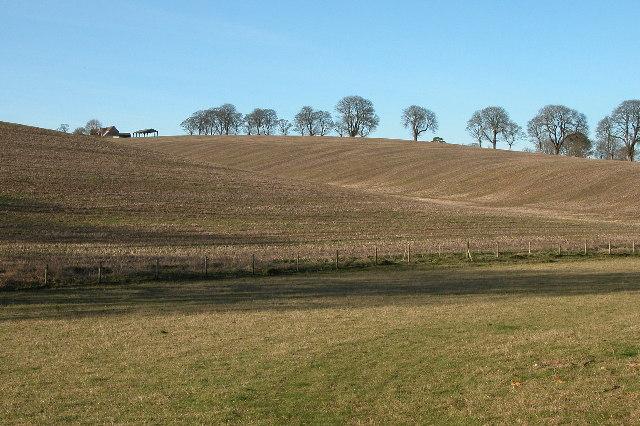 Farhill Farm
