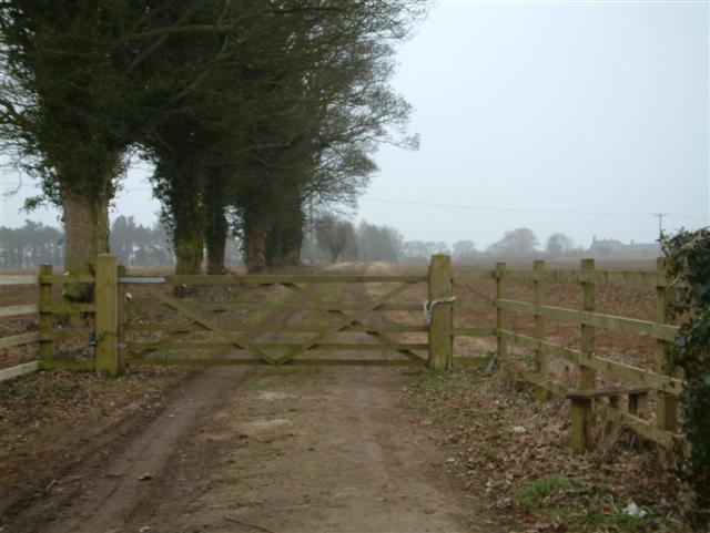Track to Hinton Barn