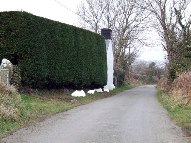 Country lane view