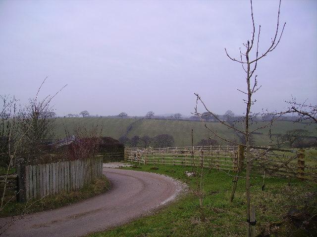 Lane Ashleys Farm