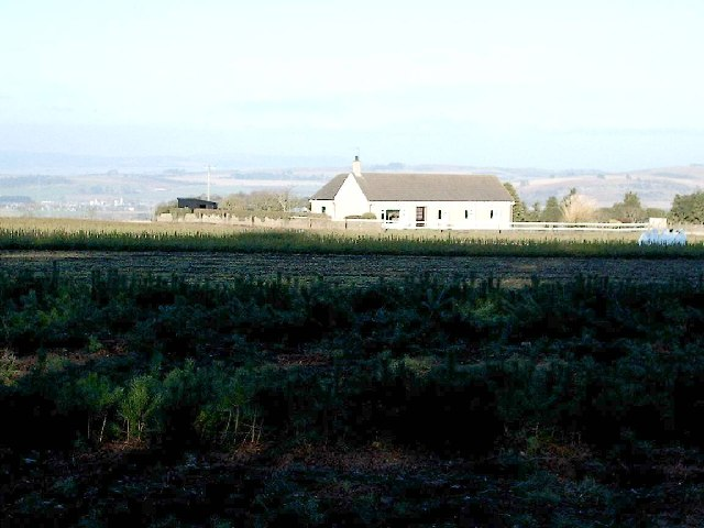 Caldhame near Forfar