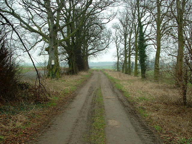 Track from Hickleton