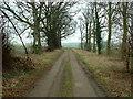 SE4804 : Track from Hickleton by Nigel Homer