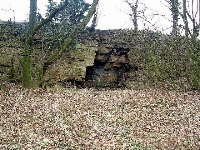 Barnburgh Cliff