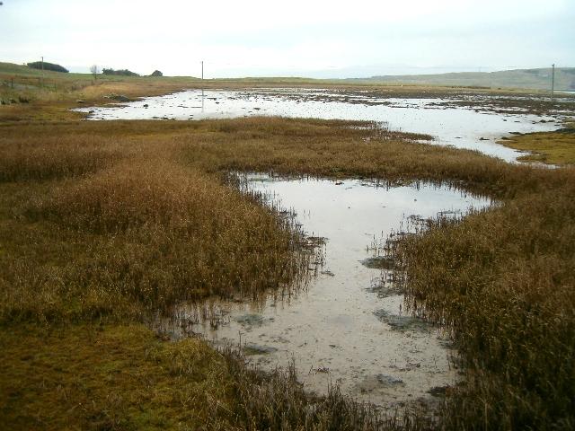 Saltmarsh by the Isle of Danna