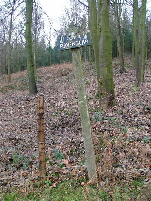 Lyke Wake Walk Signpost, Near Sheepwash