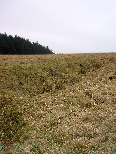 Old (tin) mine workings near Roughtor Plantation