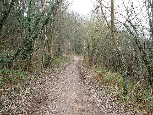 Footpath near the Don