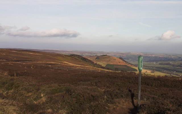 Bridleway on moorland between Danby Dale and Fryup