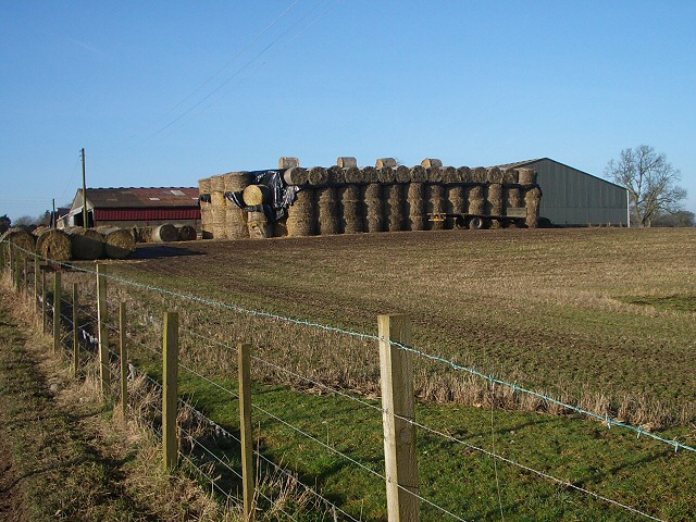 Farm buildings at Colen
