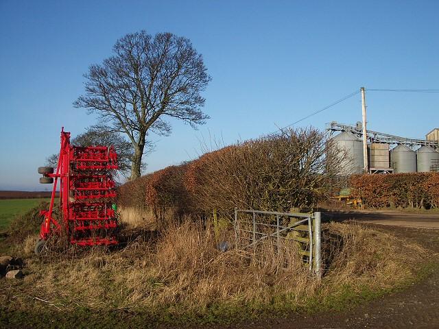 Field corner at Tarrylaw