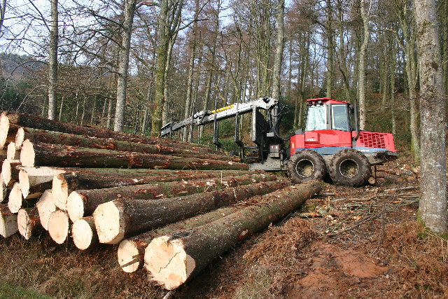 Timber Harvesting, Muncaster Fell