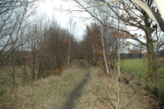 Old colliery line SW of Dodworth