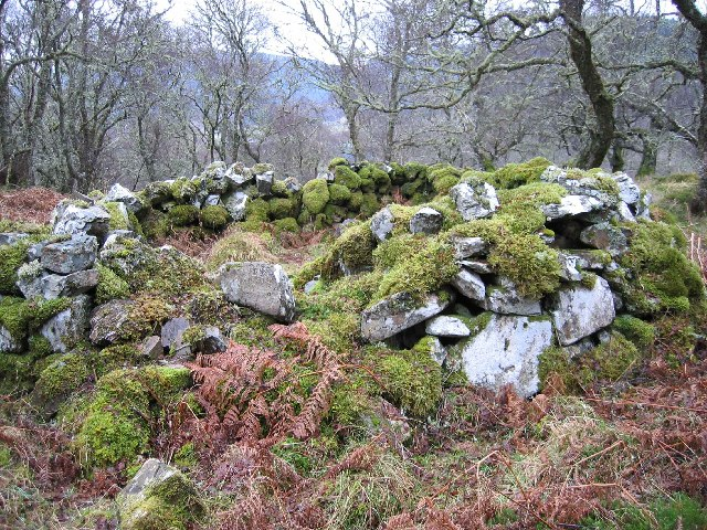 Hut in Coille Mhor Forest