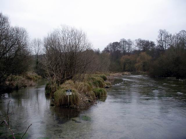 River Itchen north of Ovington