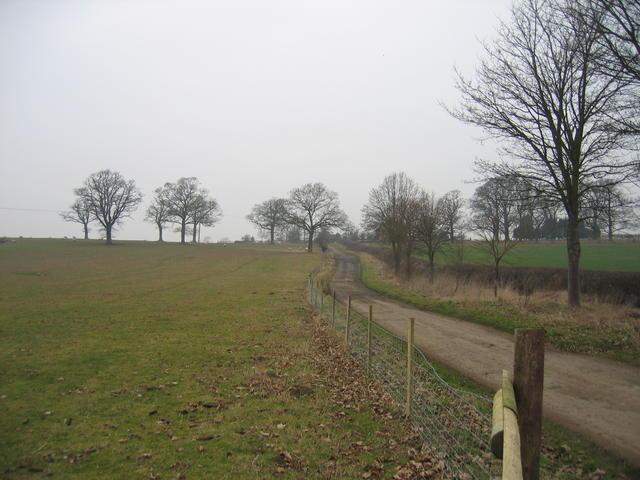 Driveway to Mount Pleasant Farm