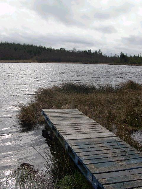 Blackaburn Lough, Wark Forest