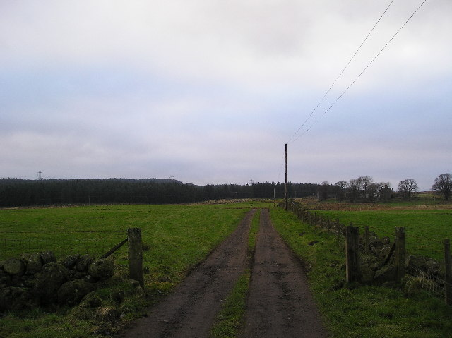 Track to Ladymuir