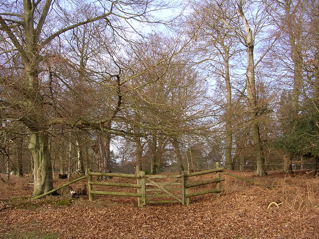 Gateway to the Church Place corner of the Denny Inclosure, New Forest