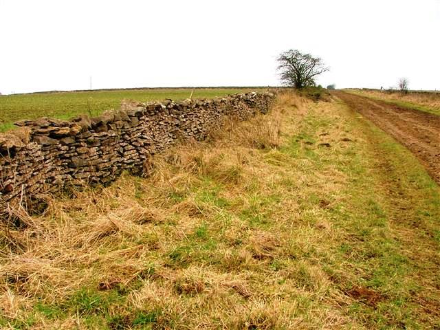 View East Along Back Lane
