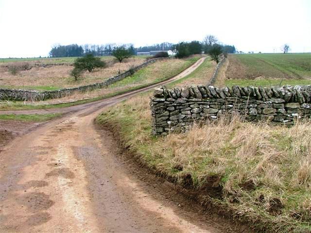 Lane To Murton Grange