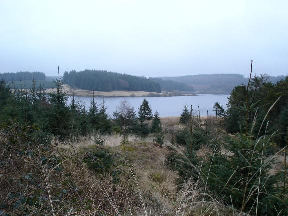 Alwen forest and reservoir
