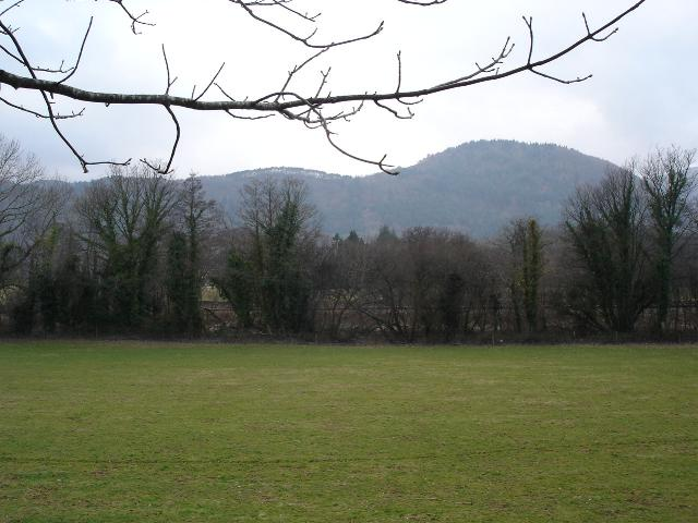 Llanrwst railway and fields