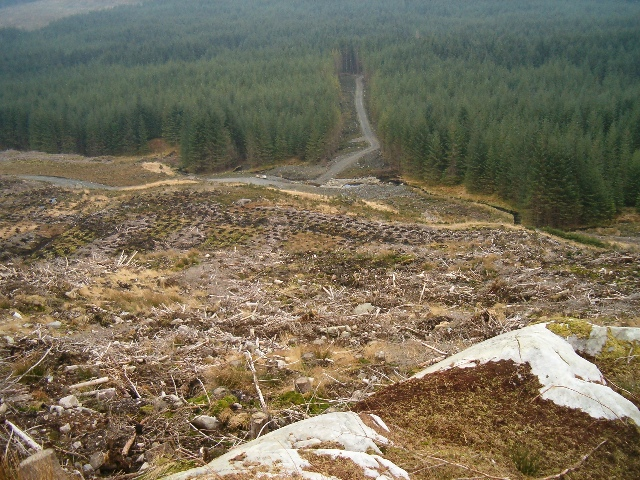 Forestry clear fell and new timber transport road, Eredine Forest