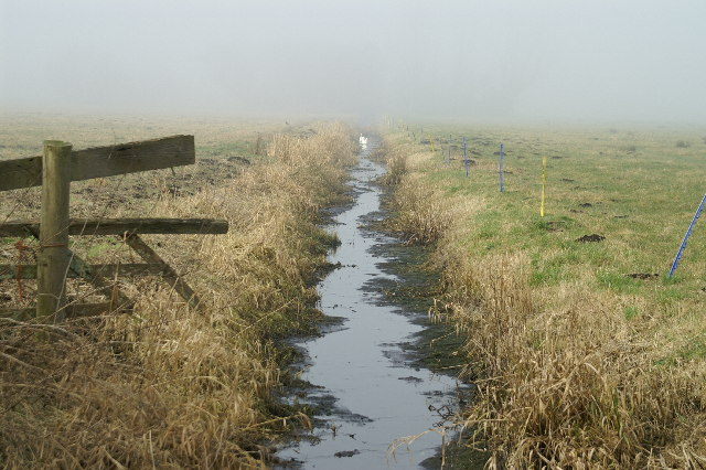Ditch on a misty Tealham Moor