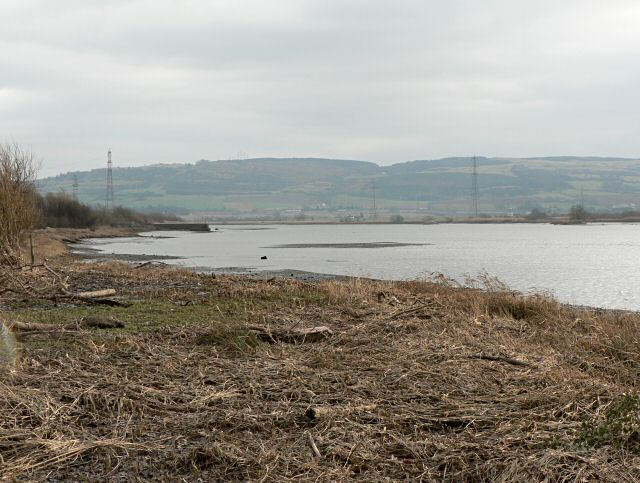 Bank of the Tay