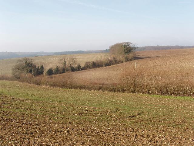 Fields near High Wycombe