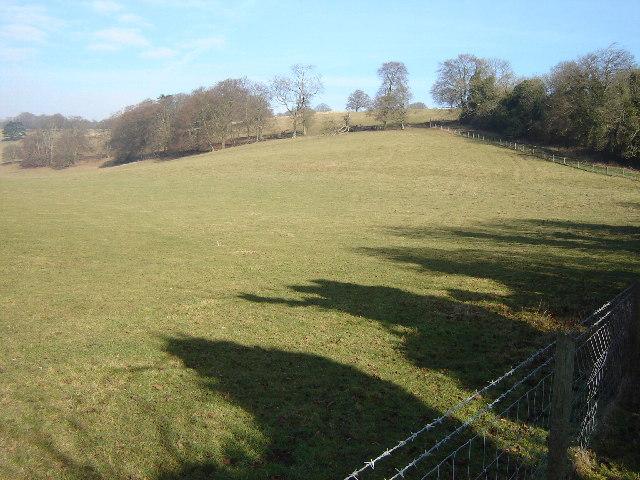 Holybourne Down