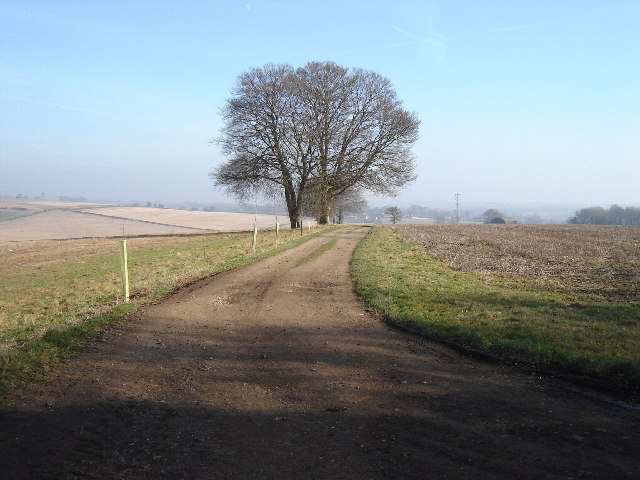 Farmland near Upper Froyle