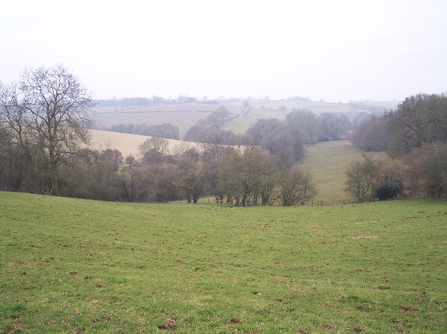 View out to Grendon Court from Hawkhurst