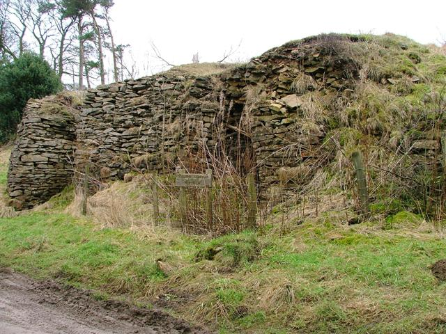 Ruined Limekilns