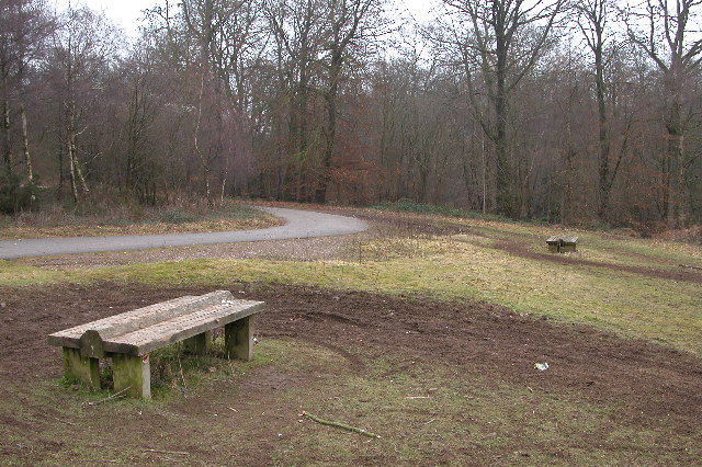 Picnic area, Eastbachmeend Enclosure