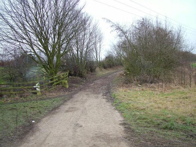 Farm Track in Sandhill