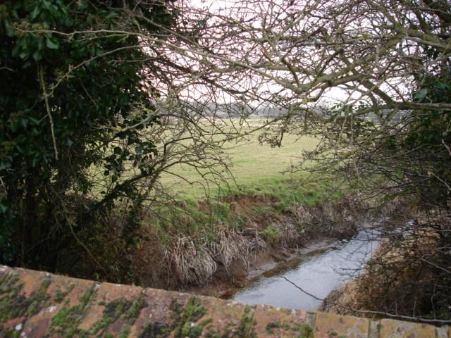 Stream Tilley  Lane  Nr Herstmonceux East Sussex
