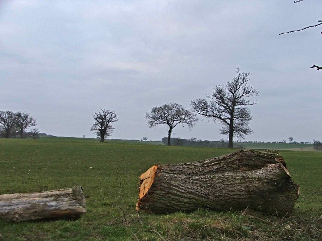 Farmland opposite Reevegate Farm, Claverhambury Road