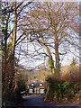ST5577 : The Dingle, Combe Dingle by Linda Bailey