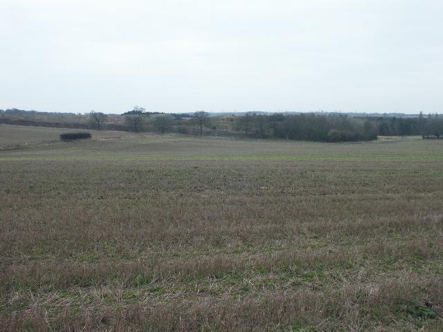 Fields, near Caistor St Edmund