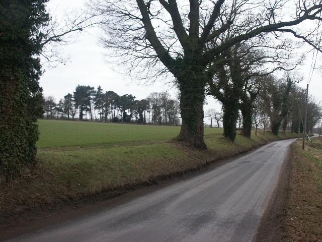 Caistor Lane, Caistor St Edmund