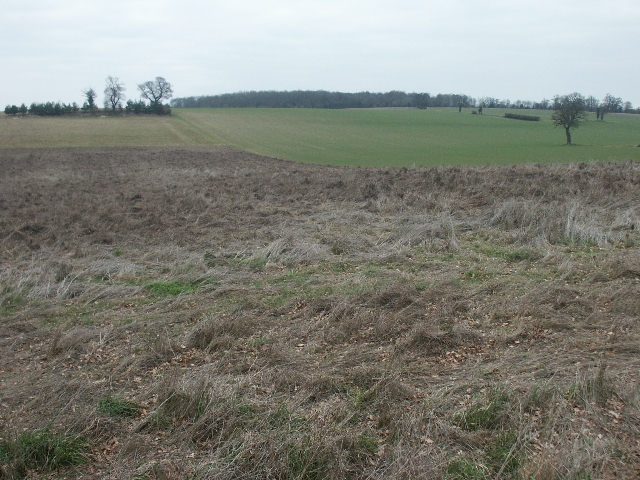 Fields and footpath, Caistor St Edmund